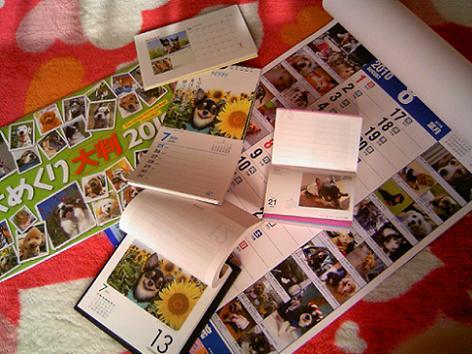 3_20091220121405.jpg