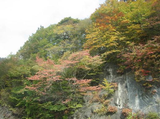 2011  10月14日 きぬがわ高原カントリー 003