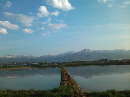 田んぼから風景