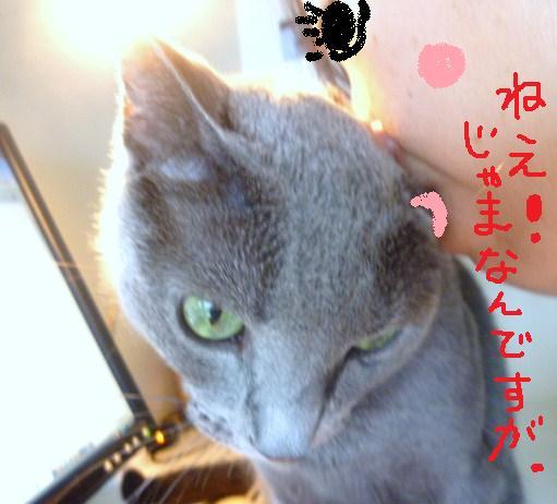 003_20100819215002.jpg