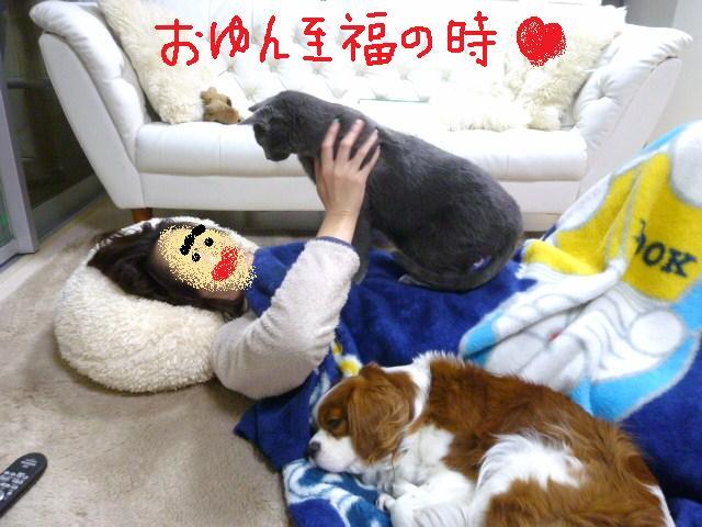 003_20110109101640.jpg