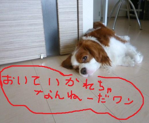 004_20100830212501.jpg