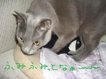 007_20100323180506.jpg