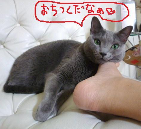 018_20101003231715.jpg