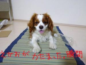 020_20100705144857.jpg