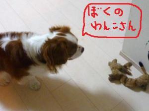 021_20101103202327.jpg