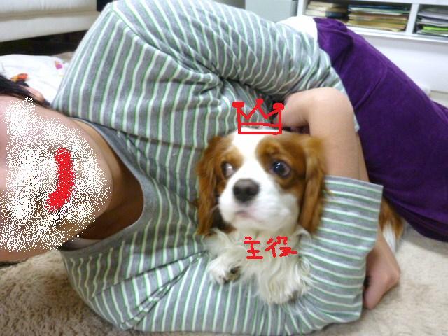 021_20110212170946.jpg