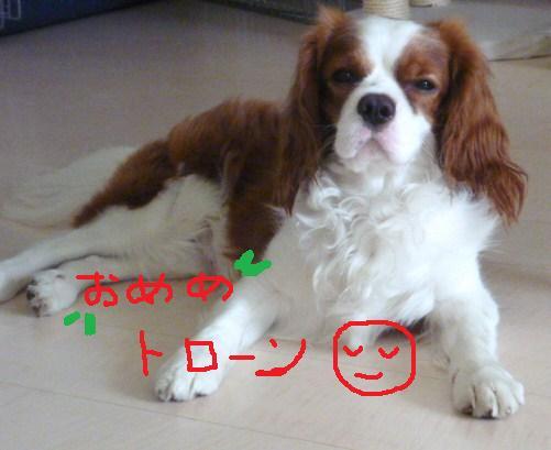 035_20100731211616.jpg