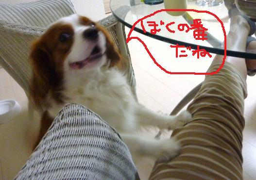 094_20100925230636.jpg