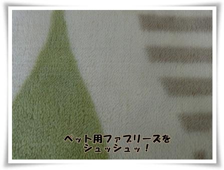 1209-6.jpg