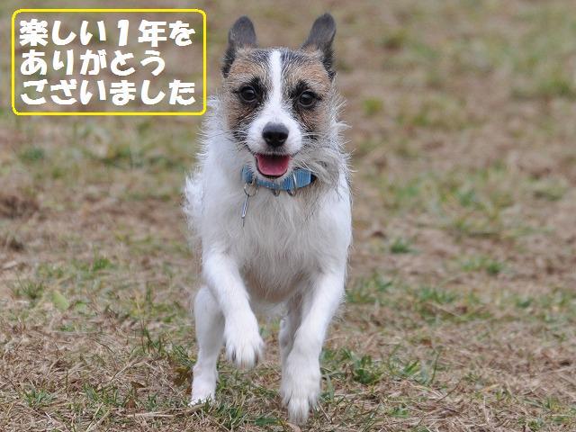 9-12-13  松戸D.R 115