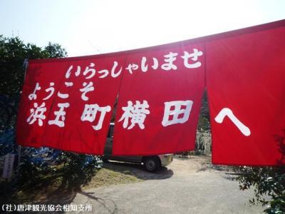 01.しだれ梅(2010年2月23日)