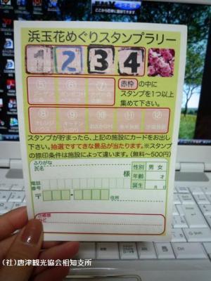 08.しだれ梅(2010年2月23日)