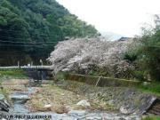 02.里見荘(2010年3月18日)
