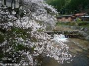 03.里見荘(2010年3月18日)