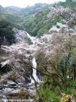 06.見帰りの滝(2010年3月18日)