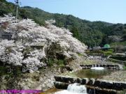01.里美荘(2010年3月22日)