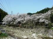 02.里美荘(2010年3月22日)