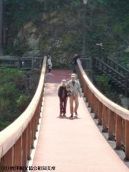 05.あじさい橋(2010年3月22日)