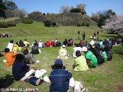 05.桜と陣跡ウォーク(2010年3月28日)