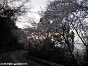 05.鏡山(2010年3月28日)