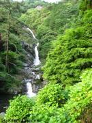 15.滝つぼ周辺(2010年5月25日)