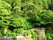 16.滝つぼ周辺(2010年5月25日)