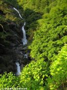09.滝つぼ周辺(2010年5月31日)