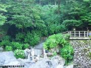 07.滝周辺(2010年6月11日)