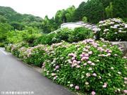 00.シャトルバス乗り場(2010年6月16日)
