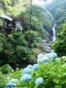 06.滝つぼ周辺(2010年6月17日)