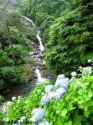 07.滝つぼ周辺(2010年6月21日)