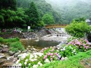 02.ほたる橋周辺(2010年6月21日)