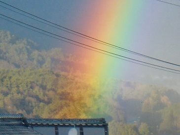 20101222a.jpg