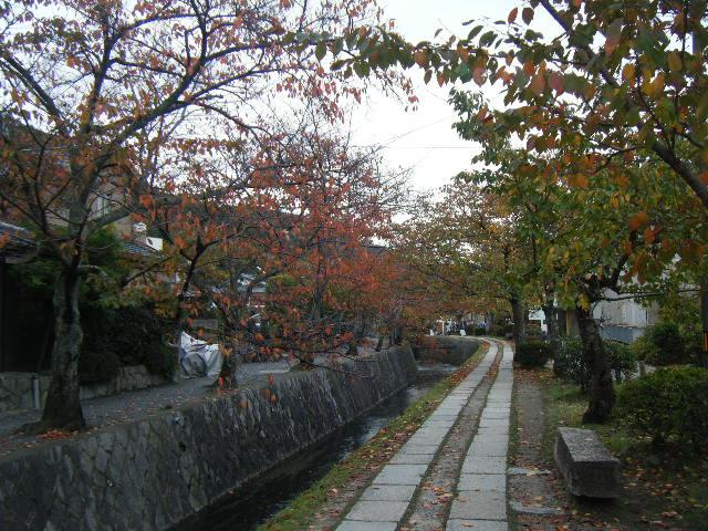2009_1116琵琶湖から哲学の道0111