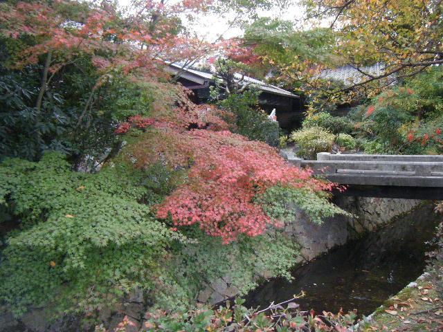 2009_1116琵琶湖から哲学の道0116