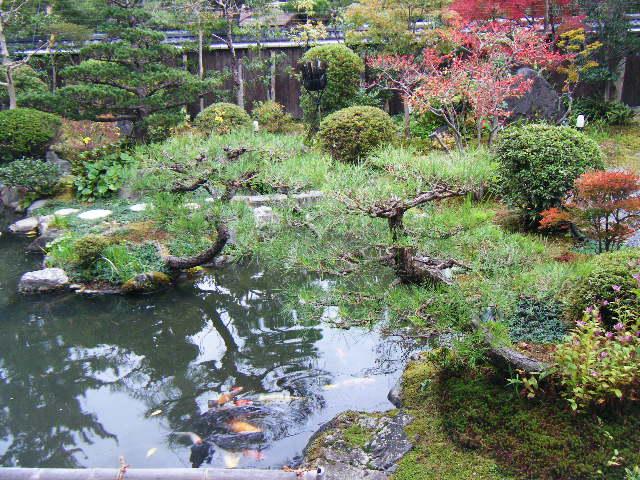 2009_1116琵琶湖から哲学の道0157