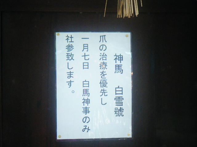 2010_0103住吉大社にて0018
