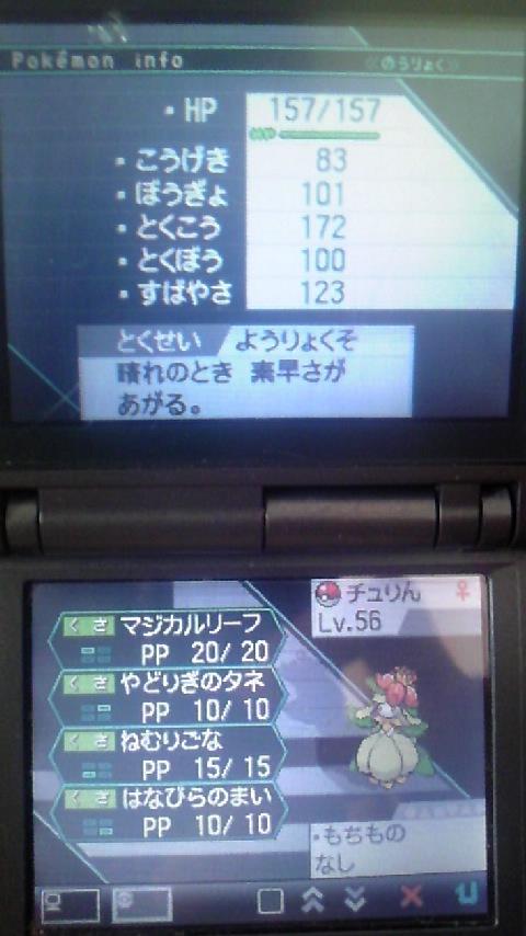 100925_1056_01.jpg