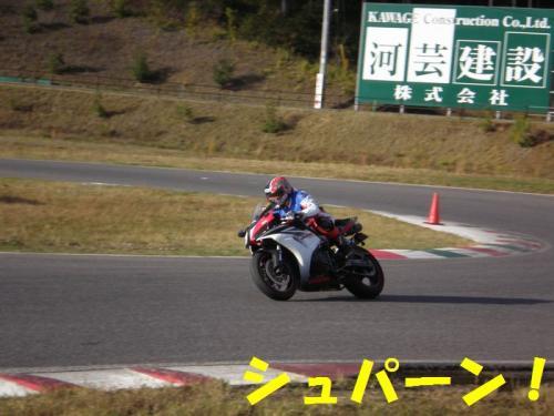 stw11.jpg
