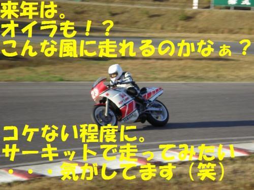 stw20.jpg