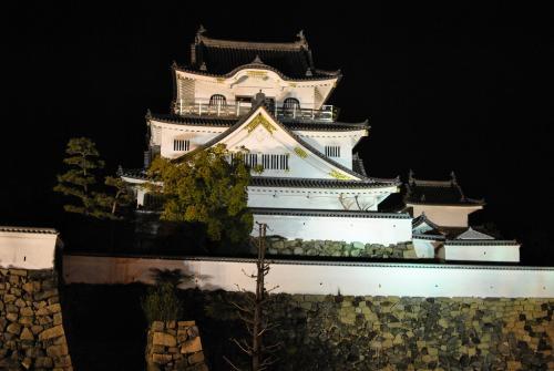 岸和田城20100215