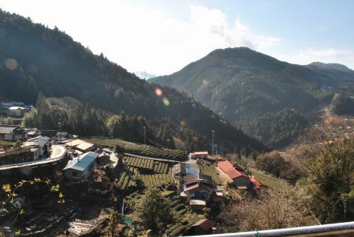 静岡県の山の中20100218