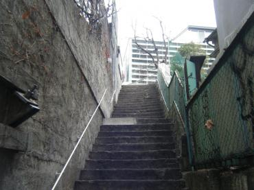スカイハウス横の階段