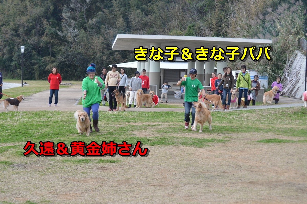 DSC_1446-021_20131127012226d10.jpg