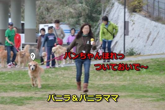 DSC_1453-028.jpg