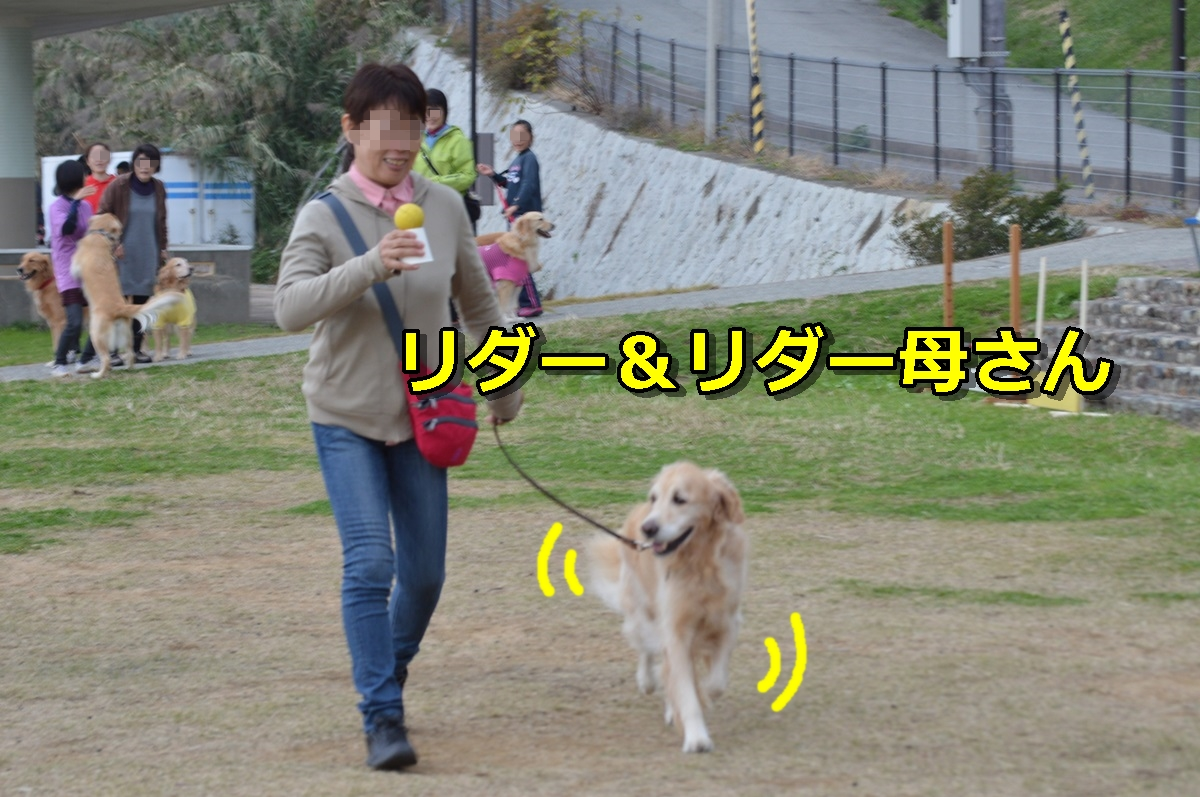 DSC_1466-041.jpg