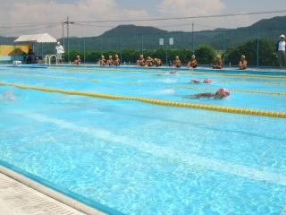 水泳大会泳ぎ