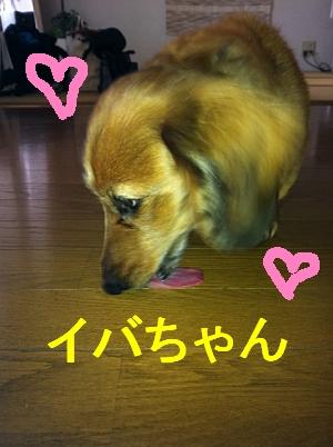 IMG_9472.jpg