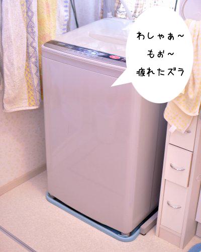 20091215_001.jpg